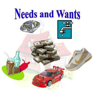 41. needs and wants